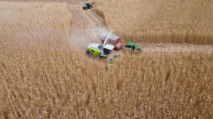 Аграріїв чекає важкий рік: експерт назвав головні проблеми