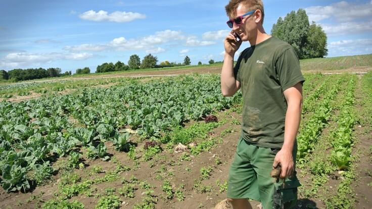 Как карантин повлияет на фермеров: эксперт дала тревожный прогноз