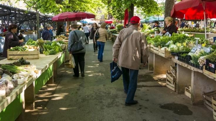 На рынке продали товар с плесенью: украинцам рассказали, как вернуть деньги