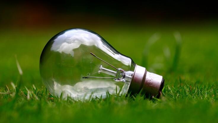 Потрібно відновити переговори — депутат про інвесторів в зелену енергетику