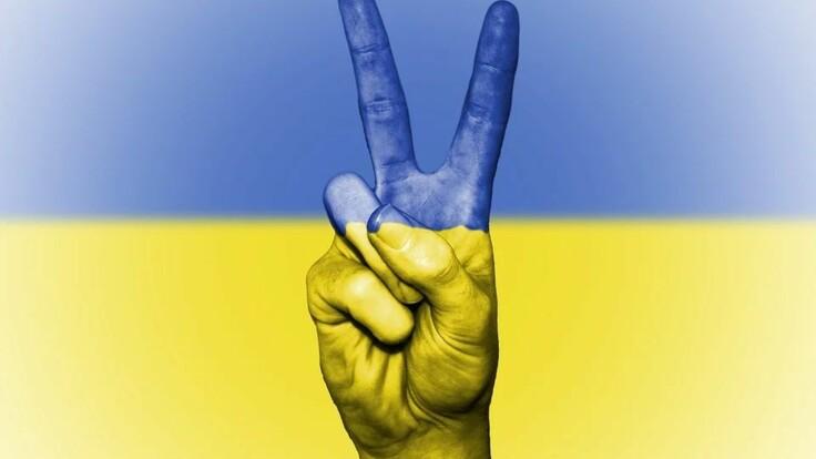 Нужен ли Украине референдум: политолог рассказал о рисках