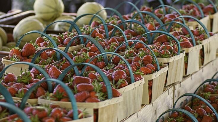 Мало клубники и ранних овощей — эксперт рассказал, какими будут урожай и цены
