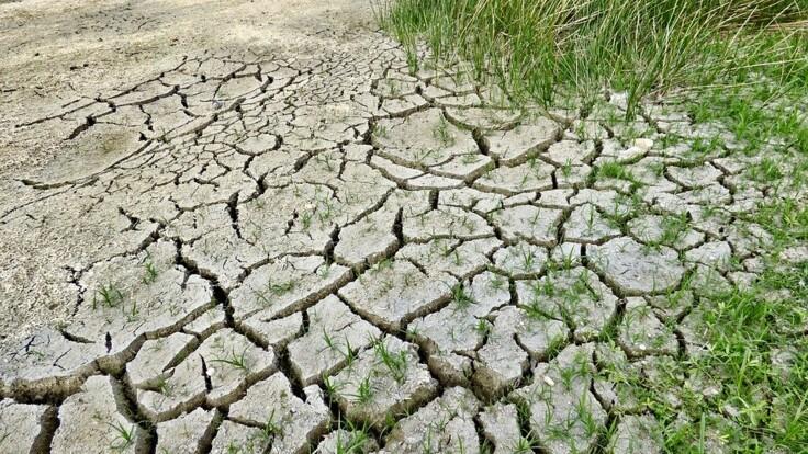 Як запобігти кліматичній катастрофі – експертка назвала три кроки