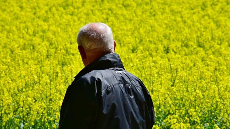 Едут за пенсиями - Тука озвучил реальное число переселенцев с Донбасса