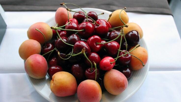 Жара и питание: диетолог рассказала, сколько фруктов в день можно есть