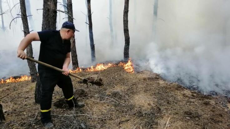 Выводы не сделали — эколог раскритиковал власти из-за пожаров на Луганщине