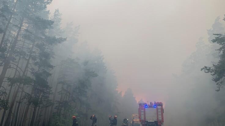 После пожаров на Луганщине новая проблема — глава ОГА сообщил подробности