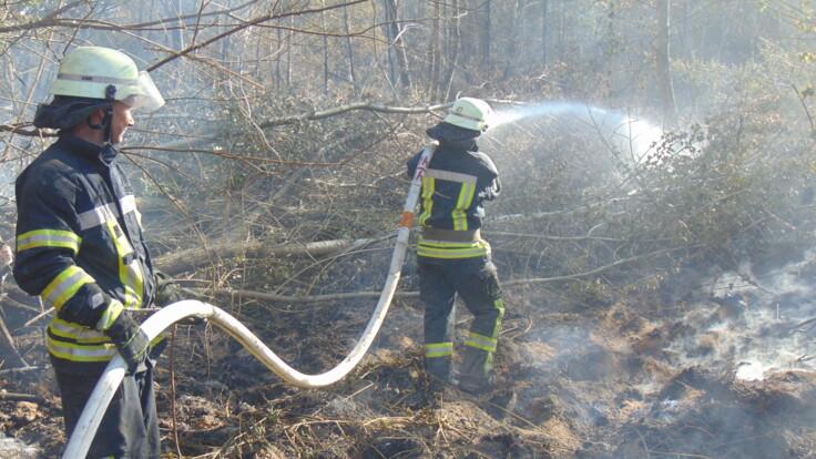 Тушение масштабного пожара на Луганщине осложнилось: что мешает спасателям