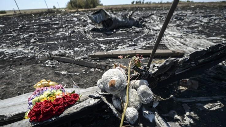 Суды по MH17  будут длиться несколько лет — в МИД назвали сроки