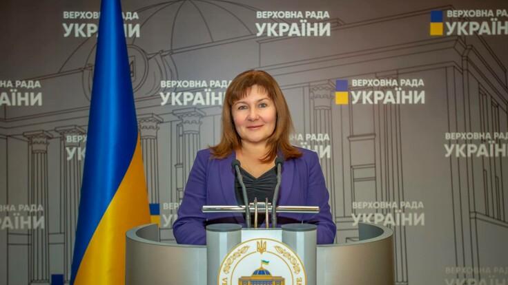 В Україні запропонували ухвалити ще один закон про референдум: деталі від нардепа