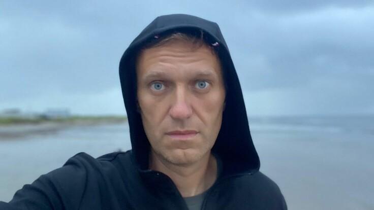 Преступников схватили за руку – журналист об отравлении Навального