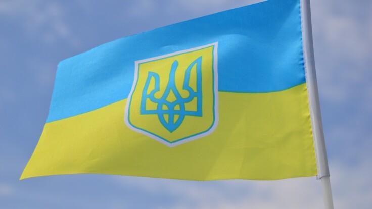 """""""Там куча недостатков"""": художник рассказал, что не так со скандальным гербом Украины"""