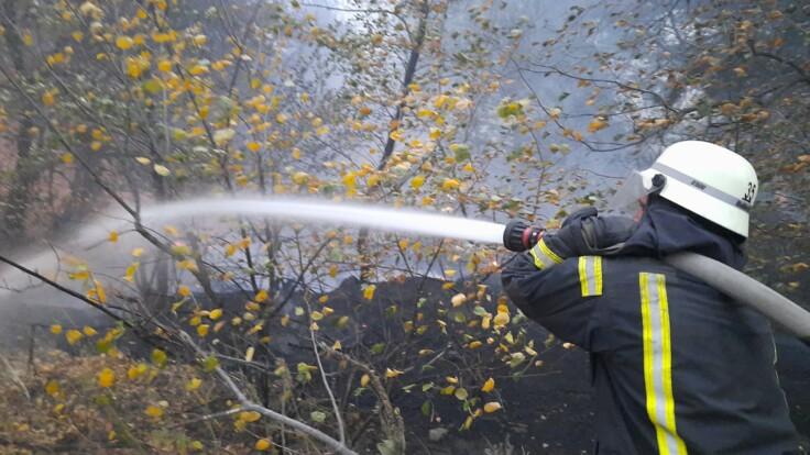 """""""Стою в тапочках, в чем были, в том и выскочили"""": жительница Луганщины рассказала о пожаре"""