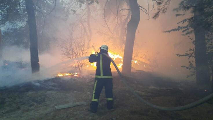 """""""Возможна диверсия"""": у Авакова назвали последствия пожаров в Луганской области"""