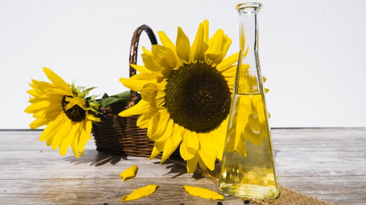 Подсолнечное масло может быть опасно — эксперт назвал вредные примеси