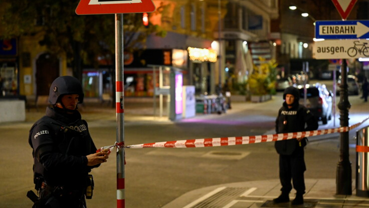 Трагедия в Вене: дипломат объяснила проблему борьбы с терактами