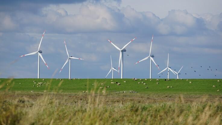 """""""Бесплатного не бывает"""": зеленые инвесторы жалуются на тарифы на электричество"""